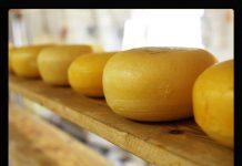 cheese 2785 640a
