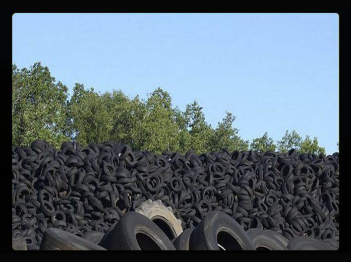 pneu Reprodução Portal EBC2